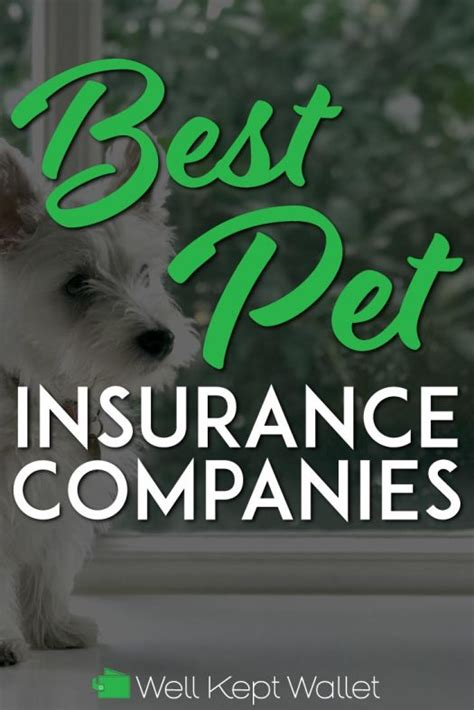 On top of similar coverage from other companies, embrace also covers dental illnesses, exam fees, alternative therapies, and. 11 Best Pet Insurance Companies (2020 Update)