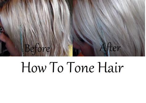 silver hair toner sallys