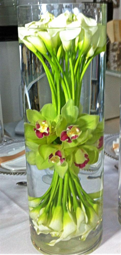 cool calla lilly  orchid water flower corporate