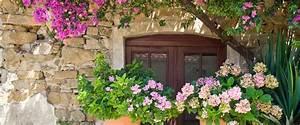 mediterrane pflanzen auf balkon und terrasse liebe With französischer balkon mit mückenschutz im garten