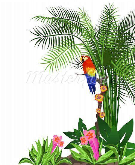 Rainforest Clipart Jungle Trees Clip Rainforest Leaves Clip Bible