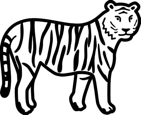 tiger standing   watching outline clip art