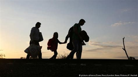 survey tens  thousands  refugee family members