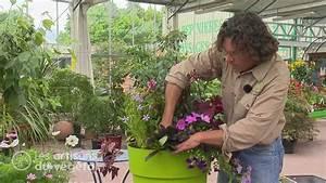 Comment Remplir Une Grande Jardinière : astuces de pro pour de belles jardini res youtube ~ Melissatoandfro.com Idées de Décoration