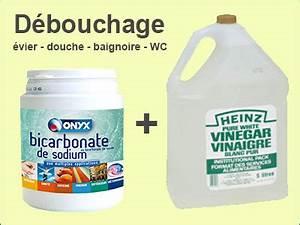 Produit Pour Déboucher Les Toilettes : 11 techniques utiles pour un d bouchage vier bouch ~ Melissatoandfro.com Idées de Décoration