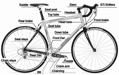 Bike Bicycle Parts Simple Machines Cycling Diagram