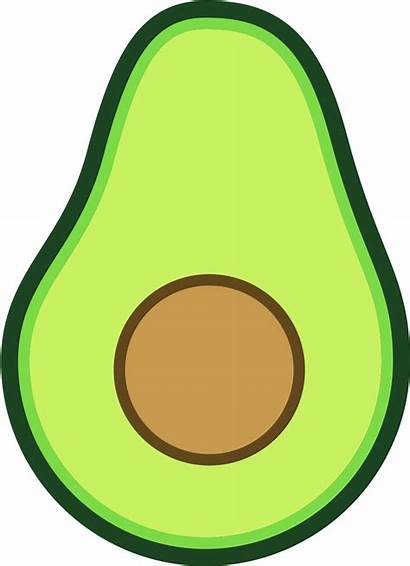 Avocado Svg Drawing Animated Library Easy Clipart