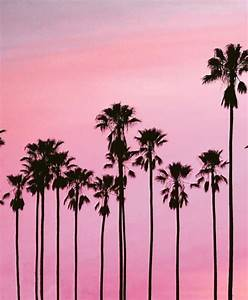 palm trees on Tumblr