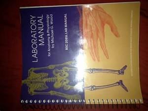 Laboratory Manual For Anatomy  U0026 Physiology Bsc 2085 L