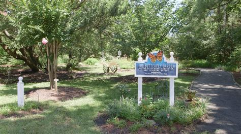 Visit The Outer Banks Arboretum and Butterfly Garden In