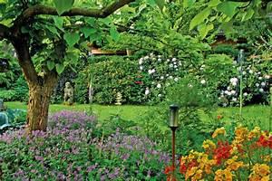 Gartengestaltung Unter Bäumen : geh lzunterpflanzung unterm baum w chst doch was gartengestaltung dekoration ~ Yasmunasinghe.com Haus und Dekorationen