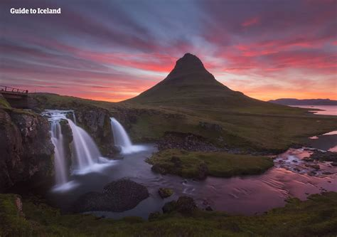 Birdwatching In Iceland What To Look For And Where Bungalo