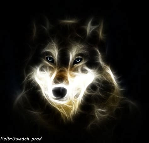 Cool Animal Wallpaper Light Wolf - cool wolf backgrounds light www imgkid the image