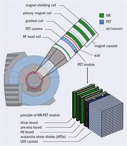 Pet And Mri  Providing The Full Picture  U2013 Cern Courier