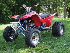 Honda Trx250 Fourtrax 250 Service  U0026 Repair Manual  1985