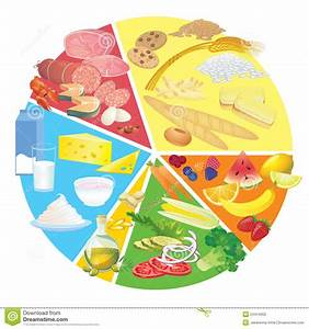 Healthy Nutrition Food Plate Rule Stock Vector