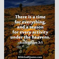 There Is A Time For Everything, And A Season For Every