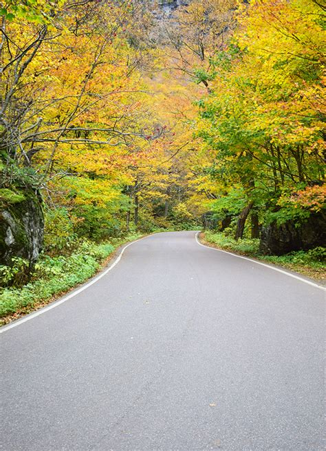 vermont fall travel guide sophisticated whimsy