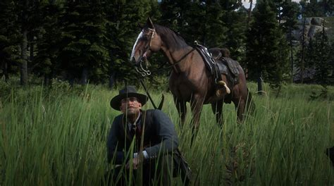 rdr2 horse hunting forums