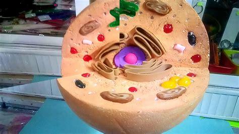 como hacer una celula animal reciclable maqueta de celula animal con dulces