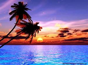 Beautiful Beach Sunset Hd Wallpaper | Wallpapers Background
