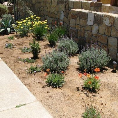 17 best images about xeriscape on gardens
