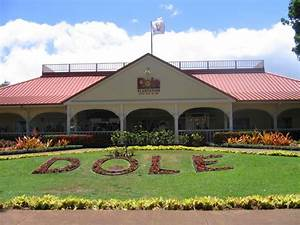 Dole Plantation – One of the Most Popular Attractions in ...