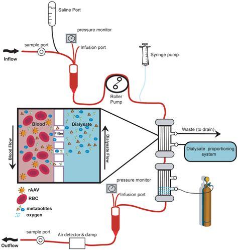 dialyzer performs traditional diffusion dialysis