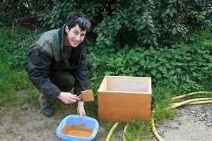 Comment Faire Une Ruche : la ferme d 39 emilie abeille agriculture biologique l 39 le d 39 yeu ~ Melissatoandfro.com Idées de Décoration
