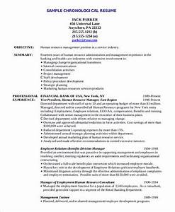 sample qualifications in resume the order of good chronological resume sample