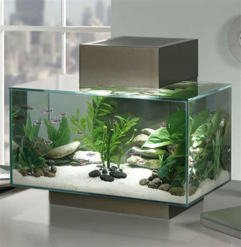 25 best ideas about nano aquarium on betta tank betta aquarium and aquarium set
