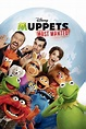 Watch Muppets Most Wanted on Netflix Today ...