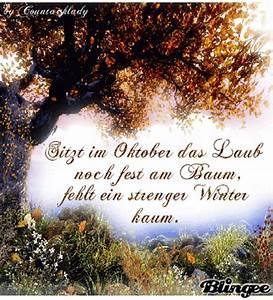Kostenlose Bilder Herbst : herbst spruch kostenlose g stebuchbilder ~ Yasmunasinghe.com Haus und Dekorationen
