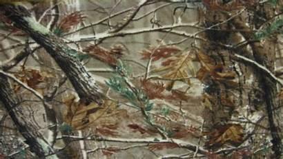 Hunting Deer Computer Camo Realtree Wallpapers Max