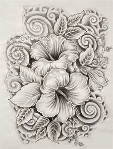 ilove-drawings: Beautiful Flower Drawings and Realistic ...
