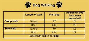 special offers prices contact us rachael edwards With dog walking rates