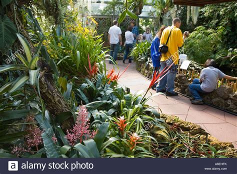 Chicago Illinois Visitors In Tropical House At Lincoln