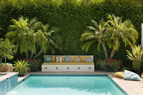 plants  pool landscaping