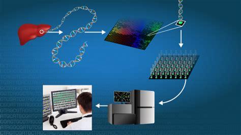 secuenciacion del adn nhgri