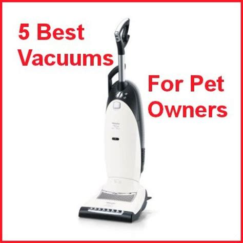 best for owners 5 best vacuum cleaners for pet owners dog cat and pet hair suction