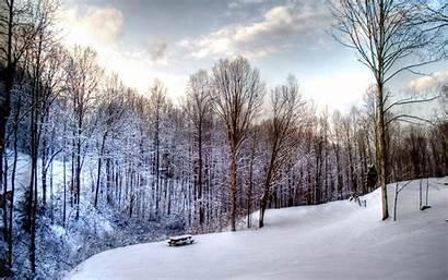 Snow Scene Christmas Winter Wallpho Windows Wallpapertag