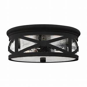 Sea gull lighting lakeview light outdoor ceiling