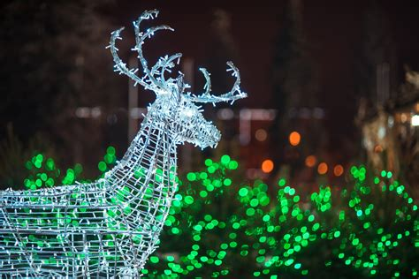 safe christmas lights electrical safety tips during the holidays henderson electric