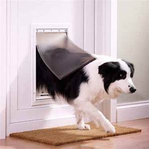 petsafe staywell aluminium large pet door