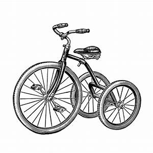 Tricycle Pictures - ClipArt Best