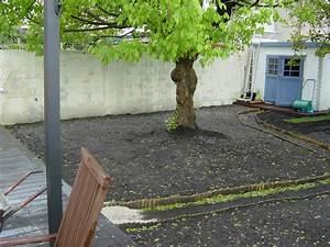 Gazon En Rouleau Truffaut : prix m2 pelouse rouleau pelouse rouleau decoration fete ~ Melissatoandfro.com Idées de Décoration
