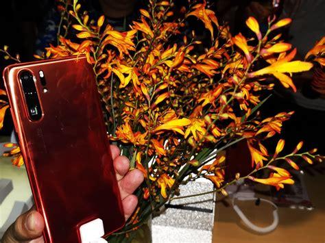 huawei p pro amber sunrise precio  disponibilidad