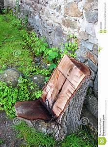 Comment Creuser Un Tronc D Arbre : chaise d 39 un tronc d 39 arbre image stock image du nature 32944885 ~ Melissatoandfro.com Idées de Décoration
