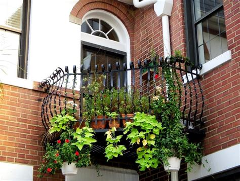 Balkon Garten by Plants For Facing Balcony Garden