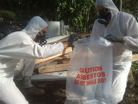 asbestos removal cost hipagescomau